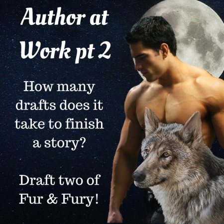 fury-and-fury-author-at-work2